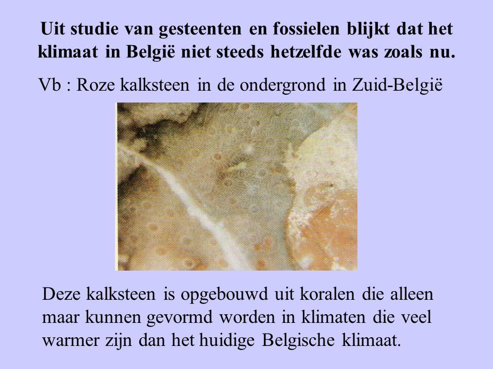 Uit studie van gesteenten en fossielen blijkt dat het klimaat in België niet steeds hetzelfde was zoals nu. Vb : Roze kalksteen in de ondergrond in Zu