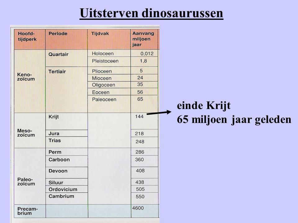 Uitsterven dinosaurussen einde Krijt 65 miljoen jaar geleden