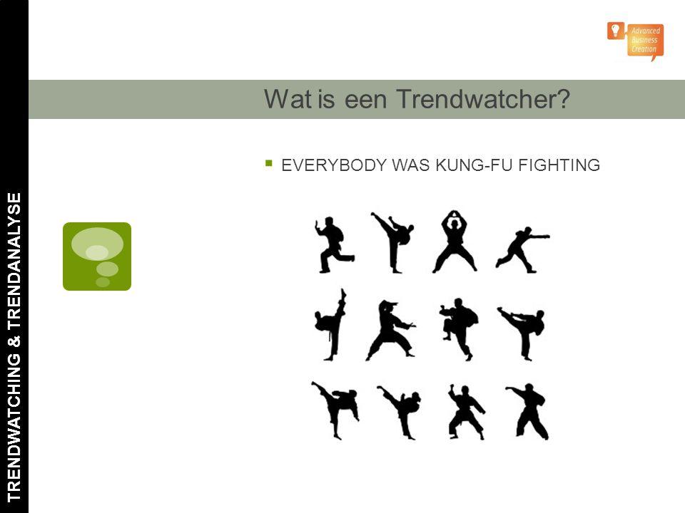 Wat is een Trendwatcher?  EVERYBODY WAS KUNG-FU FIGHTING TRENDWATCHING & TRENDANALYSE