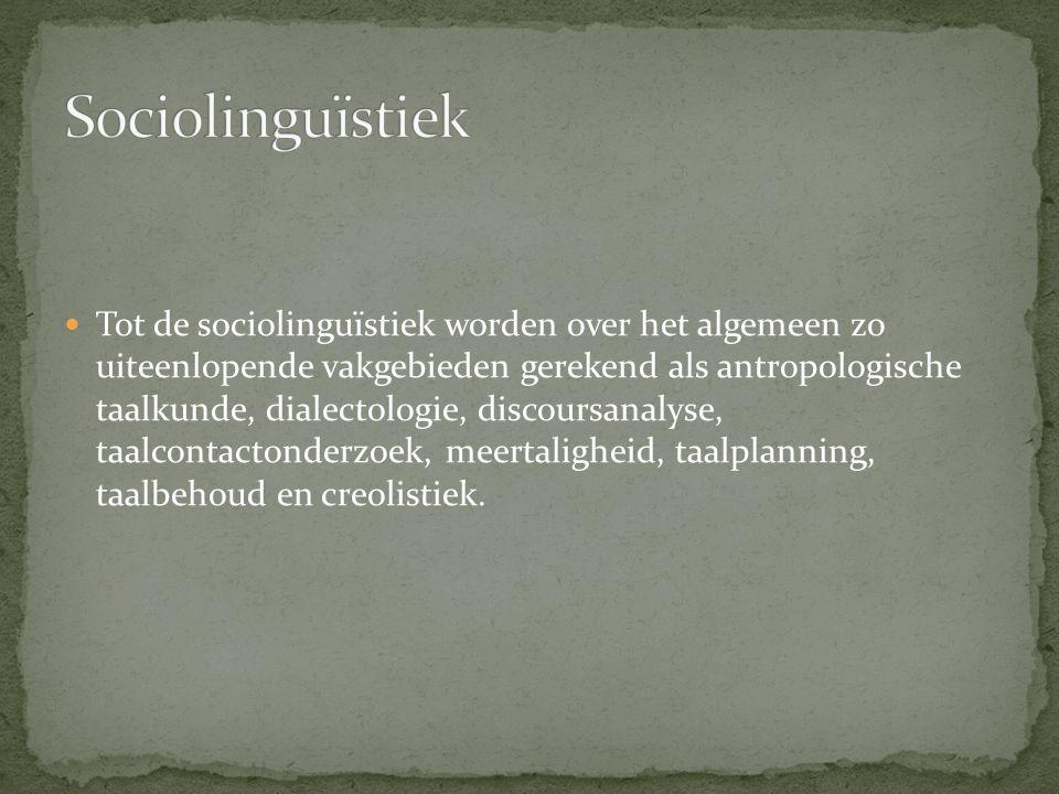 De opkomst van de sociolinguïstiek kan in de jaren zestig van de twintigste eeuw worden gesitueerd.