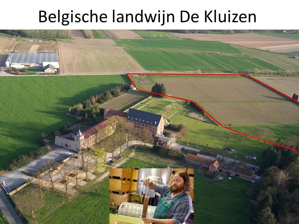 Belgische landwijn De Kluizen 2 april 2013 vin coeur Belgische wijnen