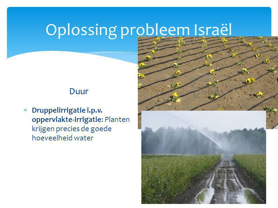Oplossing probleem Israël Duur  Druppelirrigatie i.p.v. oppervlakte-irrigatie: Planten krijgen precies de goede hoeveelheid water