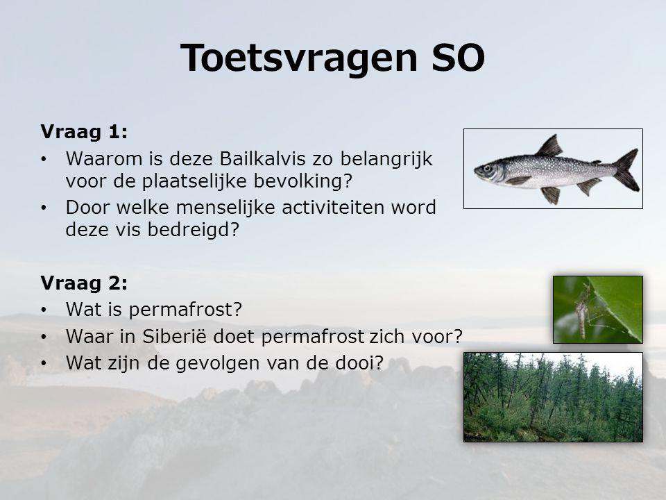 Vraag 1: Waarom is deze Bailkalvis zo belangrijk voor de plaatselijke bevolking? Door welke menselijke activiteiten word deze vis bedreigd? Vraag 2: W