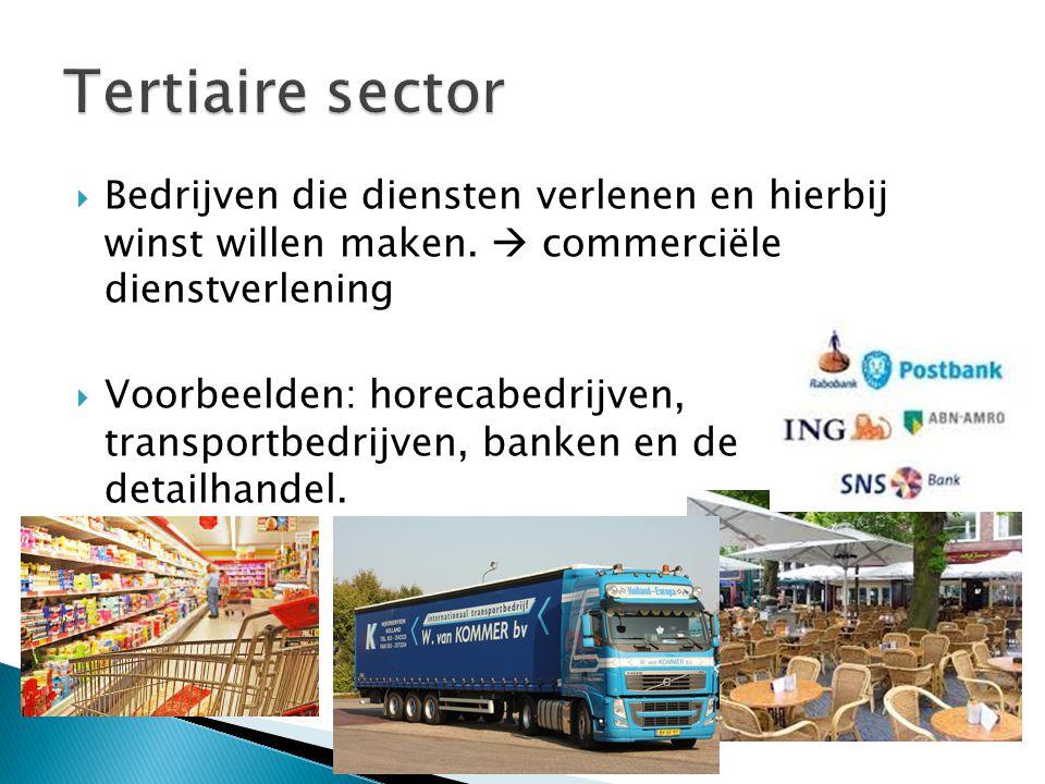  Bedrijven die diensten verlenen en hierbij winst willen maken.  commerciële dienstverlening  Voorbeelden: horecabedrijven, transportbedrijven, ban