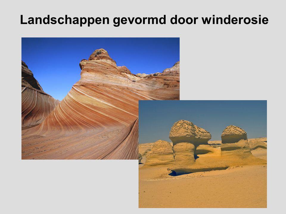 Landschappen gevormd door winderosie
