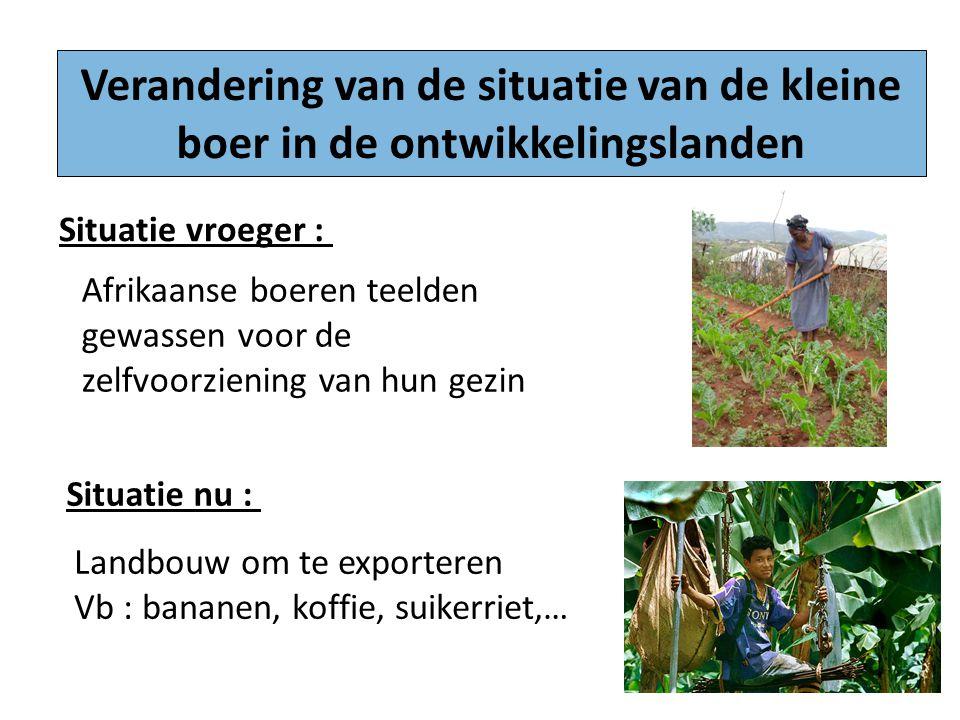 Verandering van de situatie van de kleine boer in de ontwikkelingslanden Situatie vroeger : Situatie nu : Afrikaanse boeren teelden gewassen voor de z