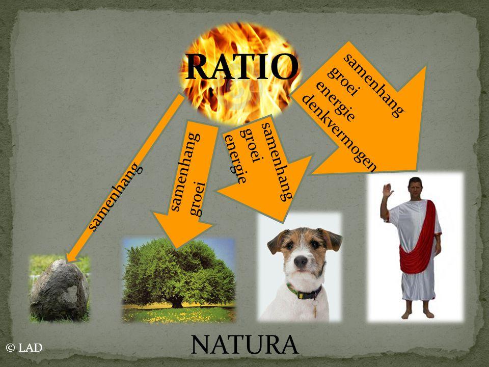 RATIO samenhang groei samenhang groei energie samenhang groei energie denkvermogen NATURA © LAD