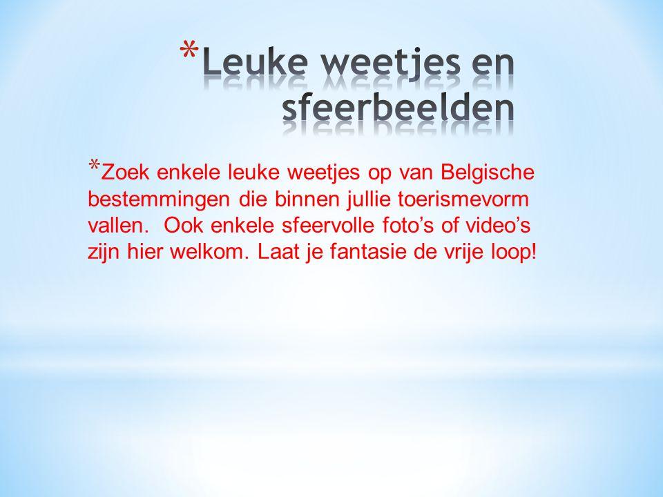 * Zoek enkele leuke weetjes op van Belgische bestemmingen die binnen jullie toerismevorm vallen.