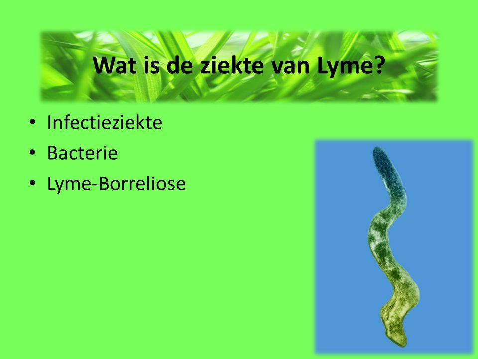 Hoe herken je de ziekte van Lyme? Goed opletten!!! Rode plek / kring Griepverschijnselen