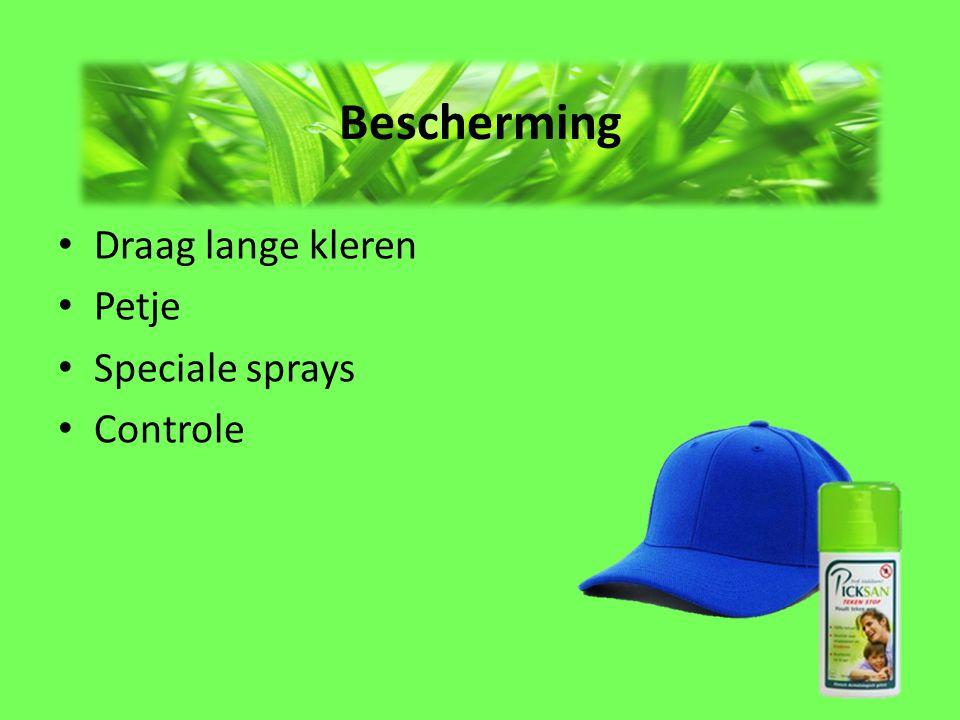 Bescherming Draag lange kleren Petje Speciale sprays Controle