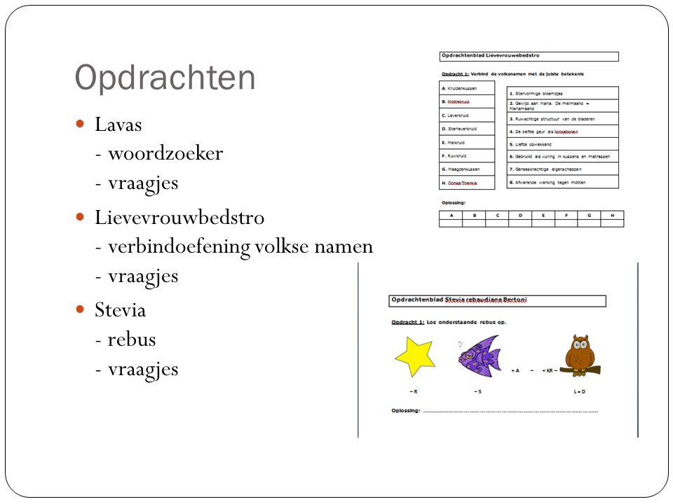 Opdrachten Lavas - woordzoeker - vraagjes Lievevrouwbedstro - verbindoefening volkse namen - vraagjes Stevia - rebus - vraagjes