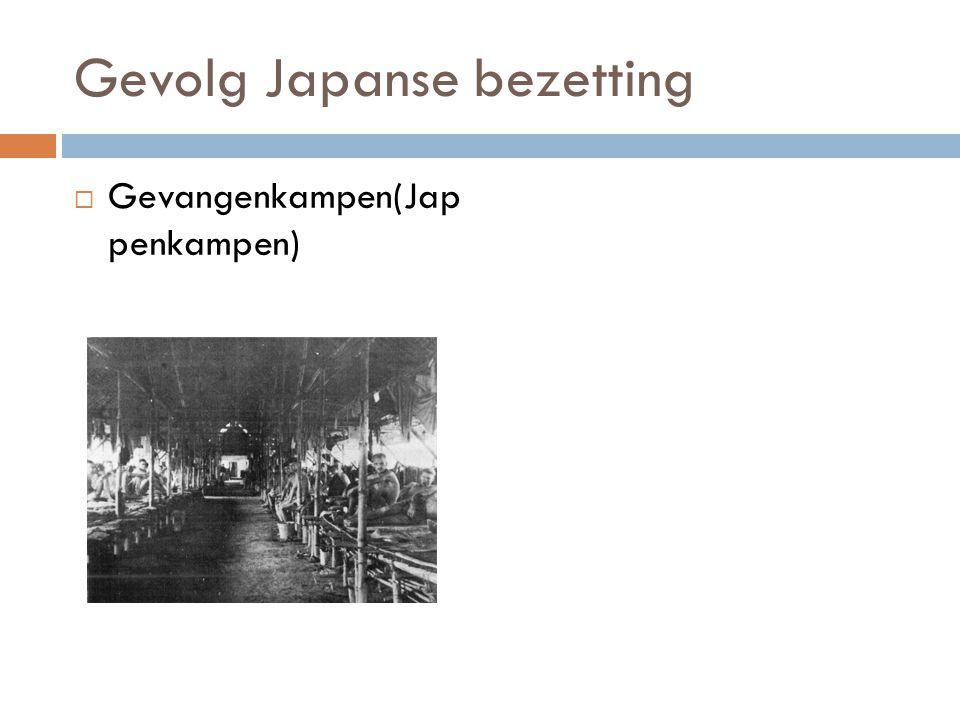  Gevangenkampen(Jap penkampen)