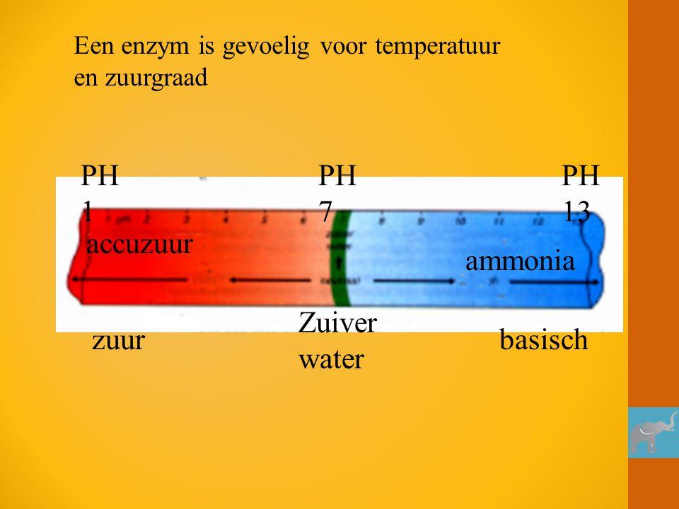 zuurbasisch accuzuur ammonia Zuiver water PH 1 PH 7 PH 13 Een enzym is gevoelig voor temperatuur en zuurgraad