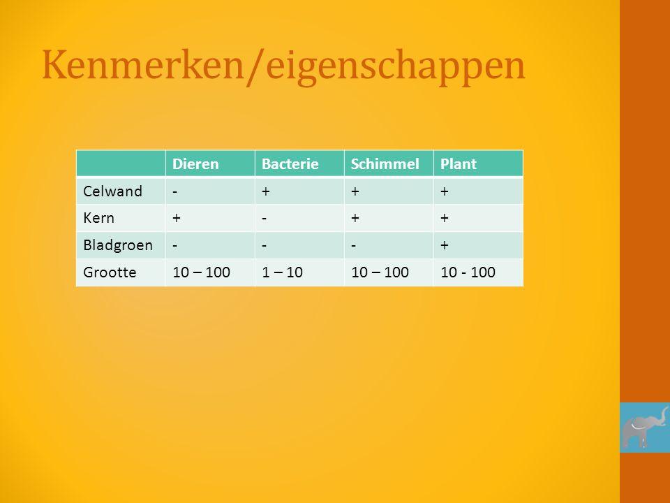 Kenmerken/eigenschappen DierenBacterieSchimmelPlant Celwand-+++ Kern+-++ Bladgroen---+ Grootte10 – 1001 – 1010 – 10010 - 100