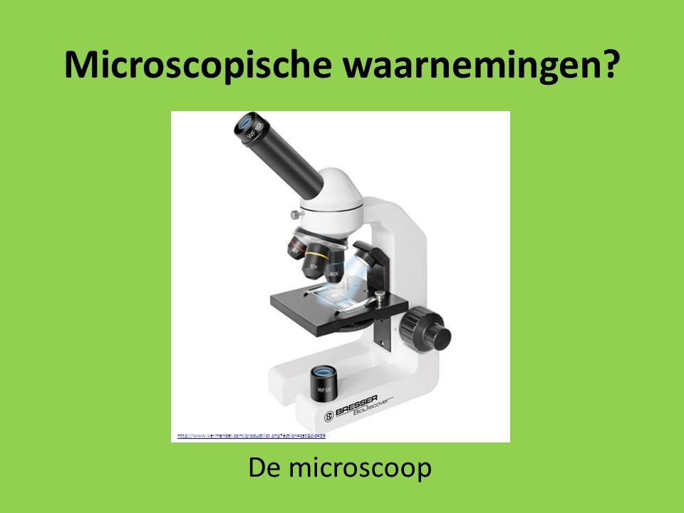 Microscopische waarnemingen? http://www.vermandel.com/productlist.php?action=cat&cid=39 De microscoop