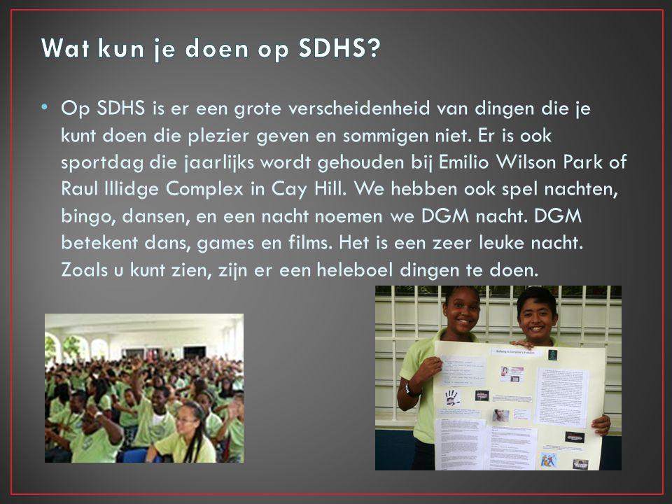 Op SDHS is er een grote verscheidenheid van dingen die je kunt doen die plezier geven en sommigen niet.