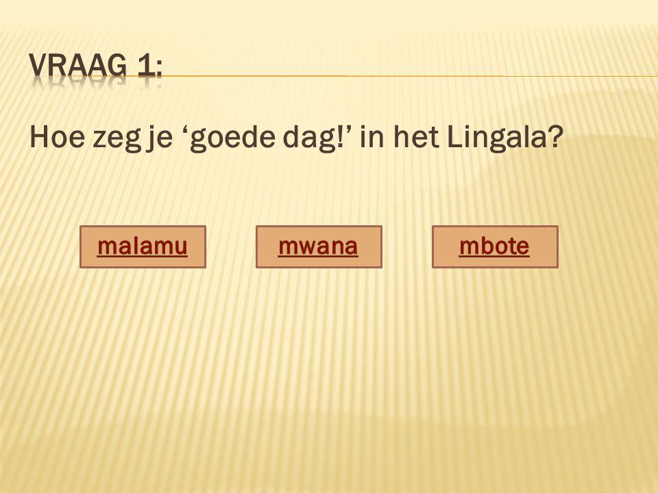Hoe zeg je 'goede dag!' in het Lingala?