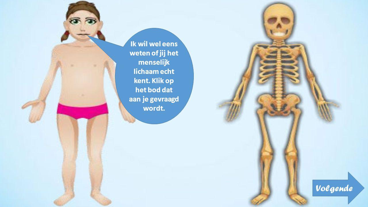 Ik wil wel eens weten of jij het menselijk lichaam echt kent. Klik op het bod dat aan je gevraagd wordt. Volgende