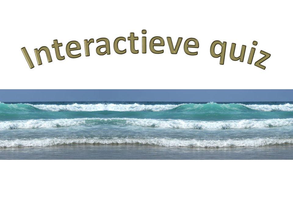Vraag 9 Voor welke sport heb je dit materiaal nodig op zee?