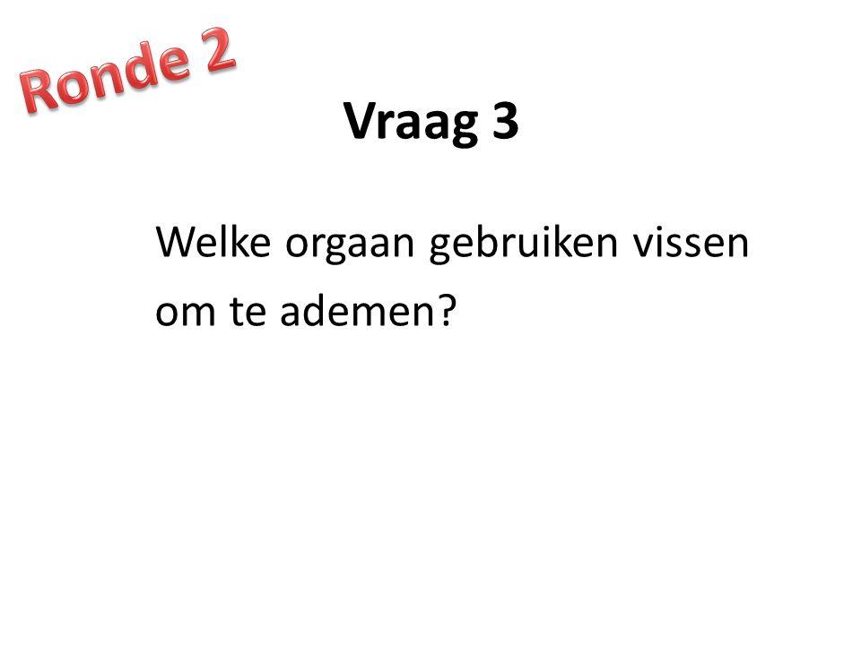 Vraag 3 Welke orgaan gebruiken vissen om te ademen?