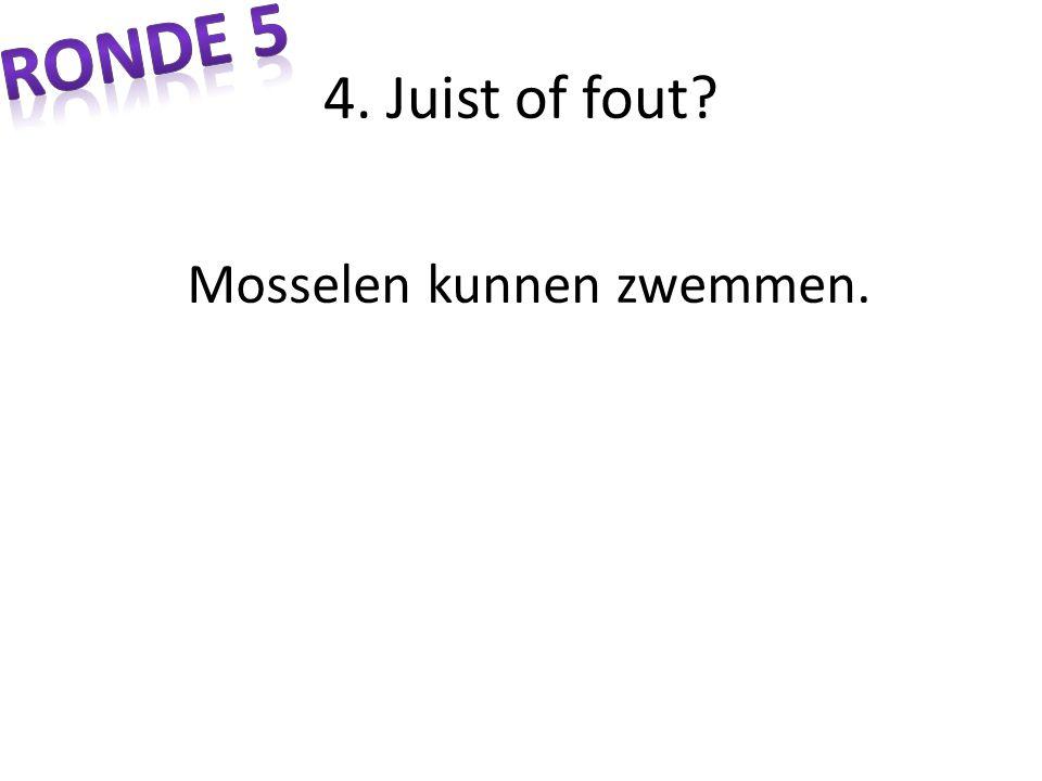 4. Juist of fout? Mosselen kunnen zwemmen.