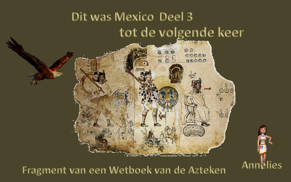 3 Izta cuauhtli De witte Adelaar,dit is de heiligste vogel voor de Azteken, omdat deze het hoogste vliegen kan en wordt gezien als de boodschapper tussen God en de Mensen 4 Fuego Neuvo Het nieuwe vuur:Reiniging van lichaam en geest door pijn.Hiermee willen ze de Goden bedanken voor hun geschenken,de 4 levens elementen: Zon,Aarde,lucht, en Water Vreugde dans Azteken dans 5 Nuestra Danza- Ceremonia