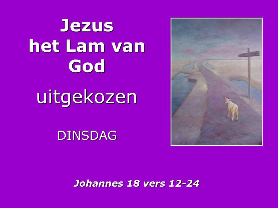 Jezus het Lam van God uitgekozenDINSDAG Johannes 18 vers 12-24