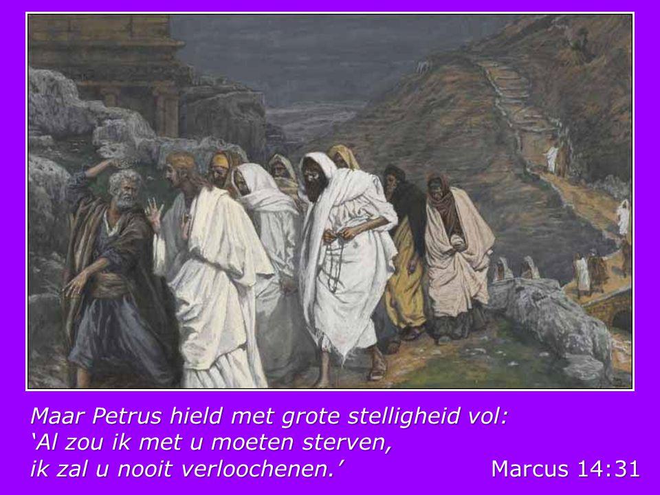 Petrus - Nel Benschop Je vissersboot lag aan de waterkant; toen zag je Jezus, wenkend met Zijn hand, je kon geen weerstand bieden aan Zijn stem die enkel zei: 'Volg Mij.' Jij volgde Hem, je zou voortaan Zijn trouwe leerling zijn, jij, Petrus, soms zo groot, maar soms zo klein.