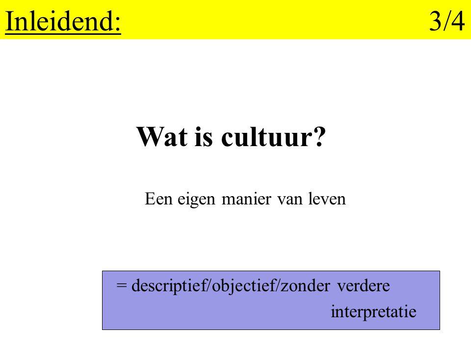 3. Sterke kanten en beperkingen van de cultuurmetafoor