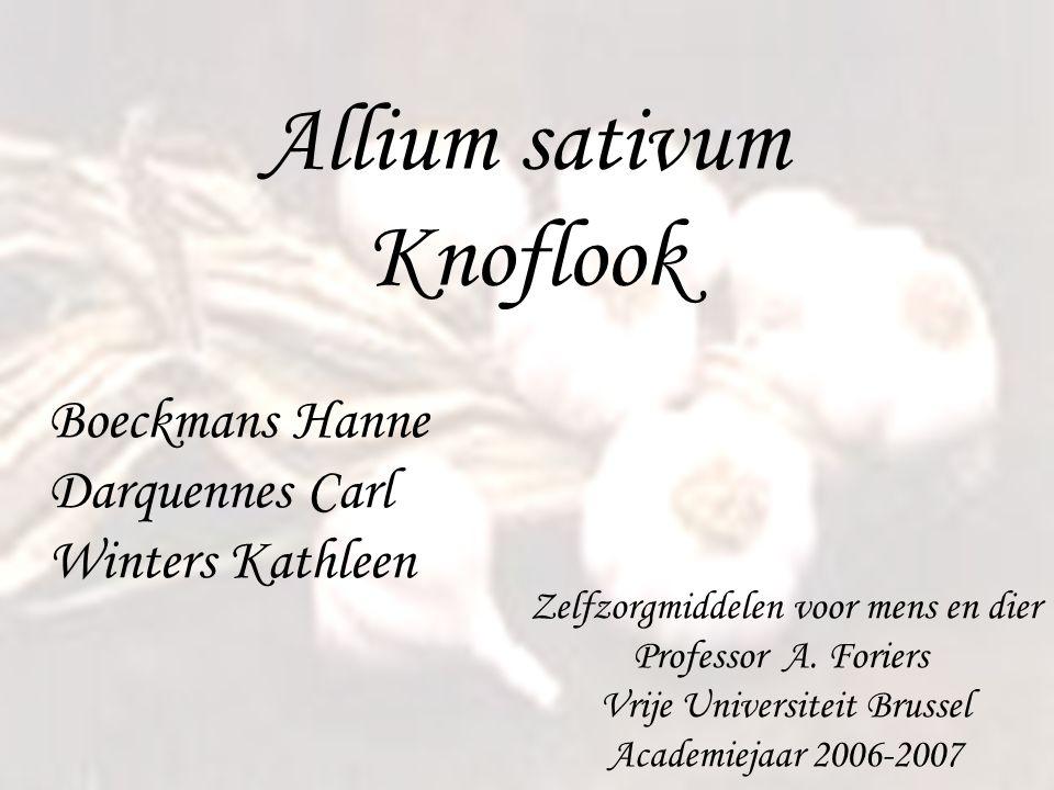 Allium sativum Knoflook Boeckmans Hanne Darquennes Carl Winters Kathleen Zelfzorgmiddelen voor mens en dier Professor A. Foriers Vrije Universiteit Br