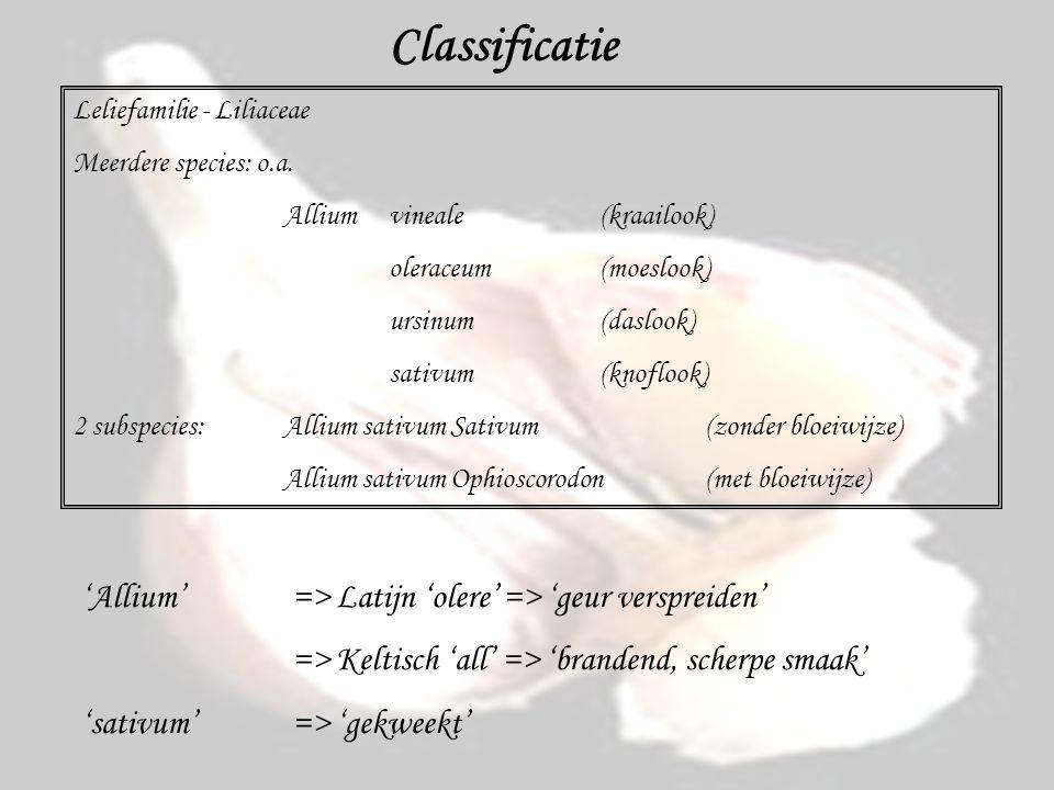 Classificatie Leliefamilie - Liliaceae Meerdere species: o.a. Alliumvineale (kraailook) oleraceum (moeslook) ursinum (daslook) sativum (knoflook) 2 su
