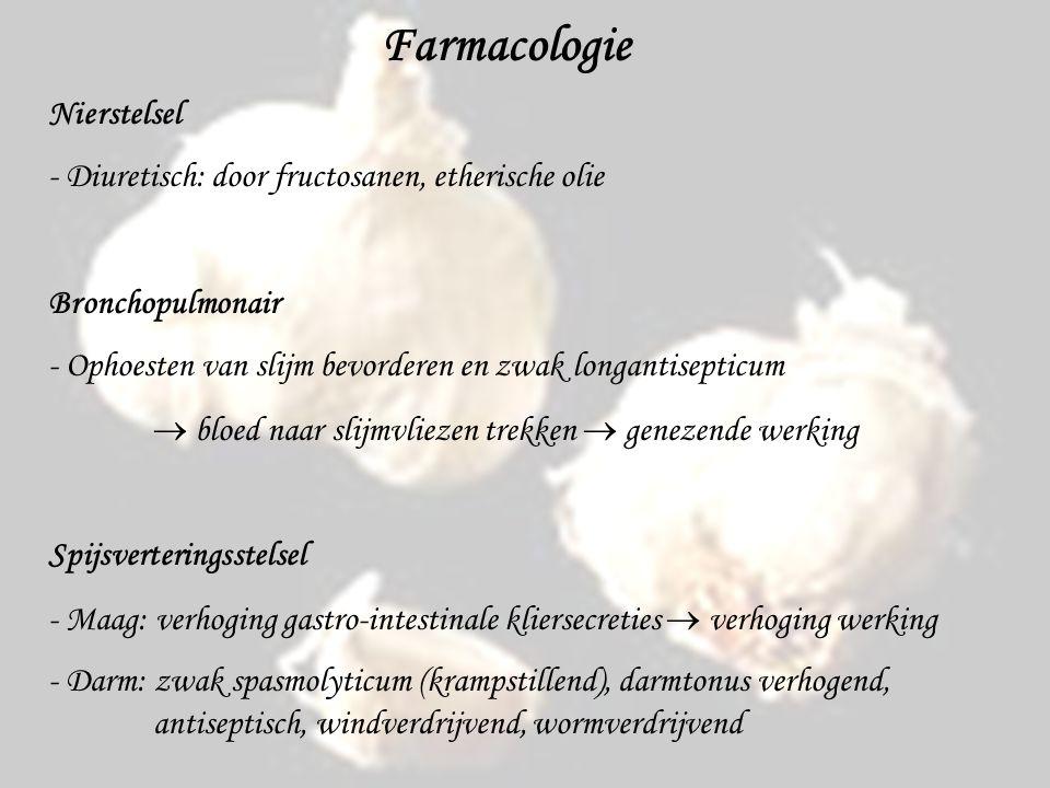 Farmacologie Nierstelsel - Diuretisch: door fructosanen, etherische olie Bronchopulmonair - Ophoesten van slijm bevorderen en zwak longantisepticum  bloed naar slijmvliezen trekken  genezende werking Spijsverteringsstelsel - Maag: verhoging gastro-intestinale kliersecreties  verhoging werking - Darm: zwak spasmolyticum (krampstillend), darmtonus verhogend, antiseptisch, windverdrijvend, wormverdrijvend