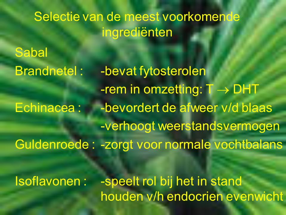 Sabal Brandnetel : -bevat fytosterolen -rem in omzetting: T  DHT Echinacea :-bevordert de afweer v/d blaas -verhoogt weerstandsvermogen Guldenroede :