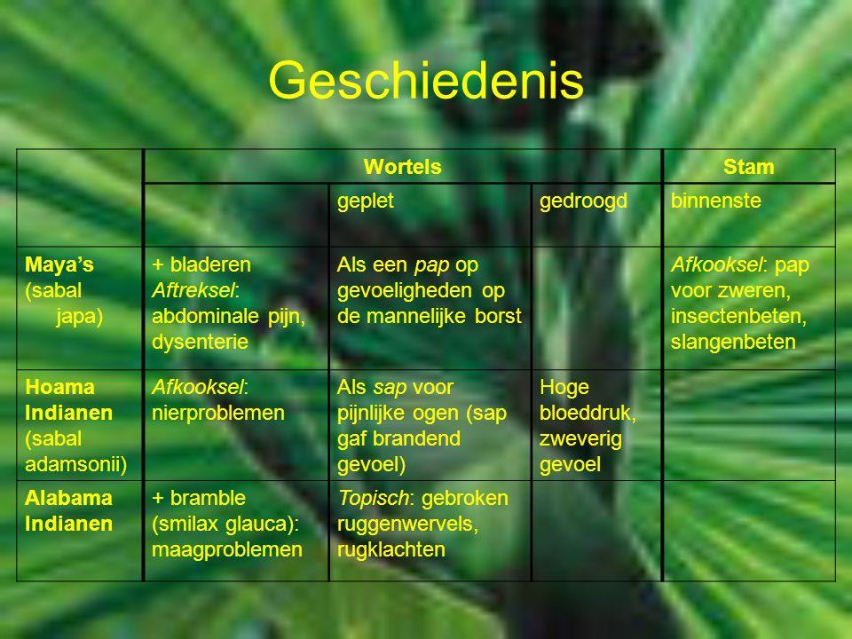 Geschiedenis WortelsStam gepletgedroogdbinnenste Maya's (sabal japa) + bladeren Aftreksel: abdominale pijn, dysenterie Als een pap op gevoeligheden op de mannelijke borst Afkooksel: pap voor zweren, insectenbeten, slangenbeten Hoama Indianen (sabal adamsonii) Afkooksel: nierproblemen Als sap voor pijnlijke ogen (sap gaf brandend gevoel) Hoge bloeddruk, zweverig gevoel Alabama Indianen + bramble (smilax glauca): maagproblemen Topisch: gebroken ruggenwervels, rugklachten