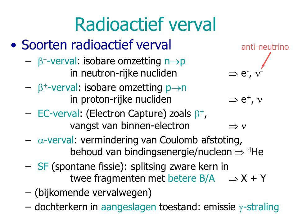 Radioactief verval Soorten radioactief verval –   -verval: isobare omzetting n  p in neutron-rijke nucliden  e -,  –  + -verval: isobare omzetting p  n in proton-rijke nucliden  e +, – EC-verval: (Electron Capture) zoals  +, vangst van binnen-electron  –  -verval: vermindering van Coulomb afstoting, behoud van bindingsenergie/nucleon  4 He – SF (spontane fissie): splitsing zware kern in twee fragmenten met betere B/A  X + Y –(bijkomende vervalwegen) –dochterkern in aangeslagen toestand: emissie  -straling anti-neutrino