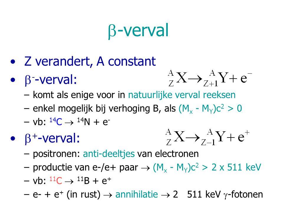  -verval Z verandert, A constant  - -verval: –komt als enige voor in natuurlijke verval reeksen –enkel mogelijk bij verhoging B, als (M x - M Y )c 2 > 0 –vb: 14 C  14 N + e -  + -verval: –positronen: anti-deeltjes van electronen –productie van e-/e+ paar  (M x - M Y )c 2 > 2 x 511 keV –vb: 11 C  11 B + e + –e- + e + (in rust)  annihilatie  2 511 keV  -fotonen