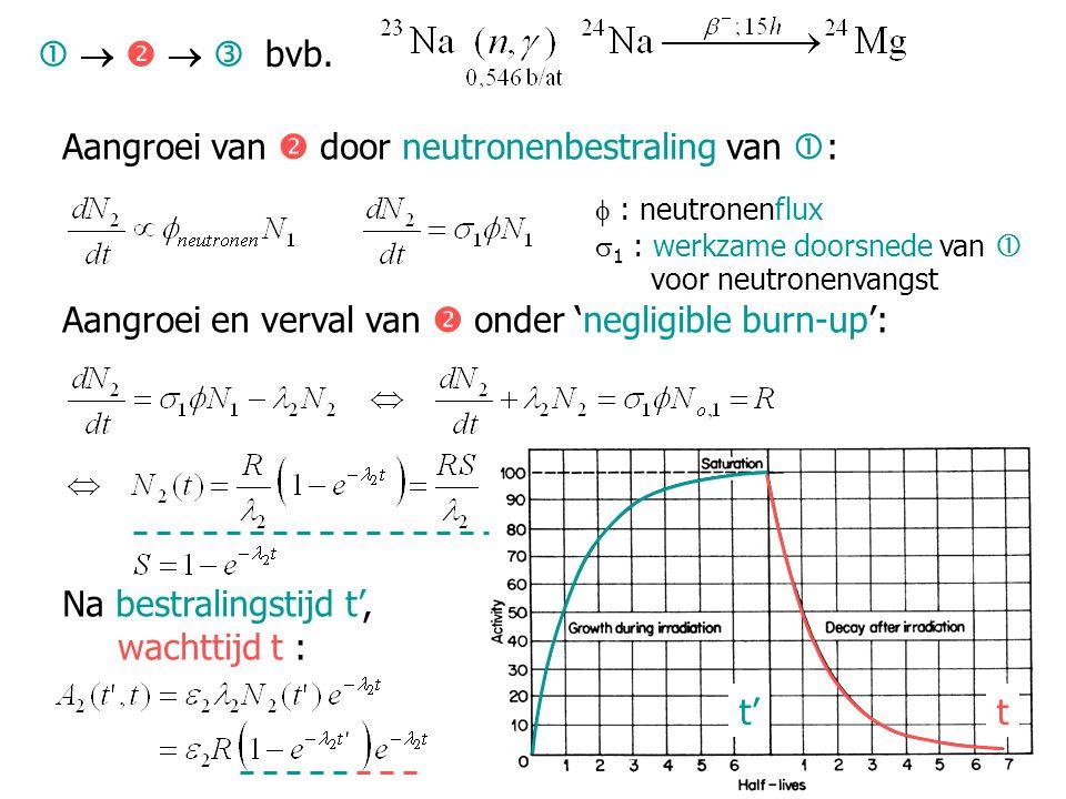 Aangroei van  door neutronenbestraling van  :  : neutronenflux  1 : werkzame doorsnede van  voor neutronenvangst Aangroei en verval van  onder '