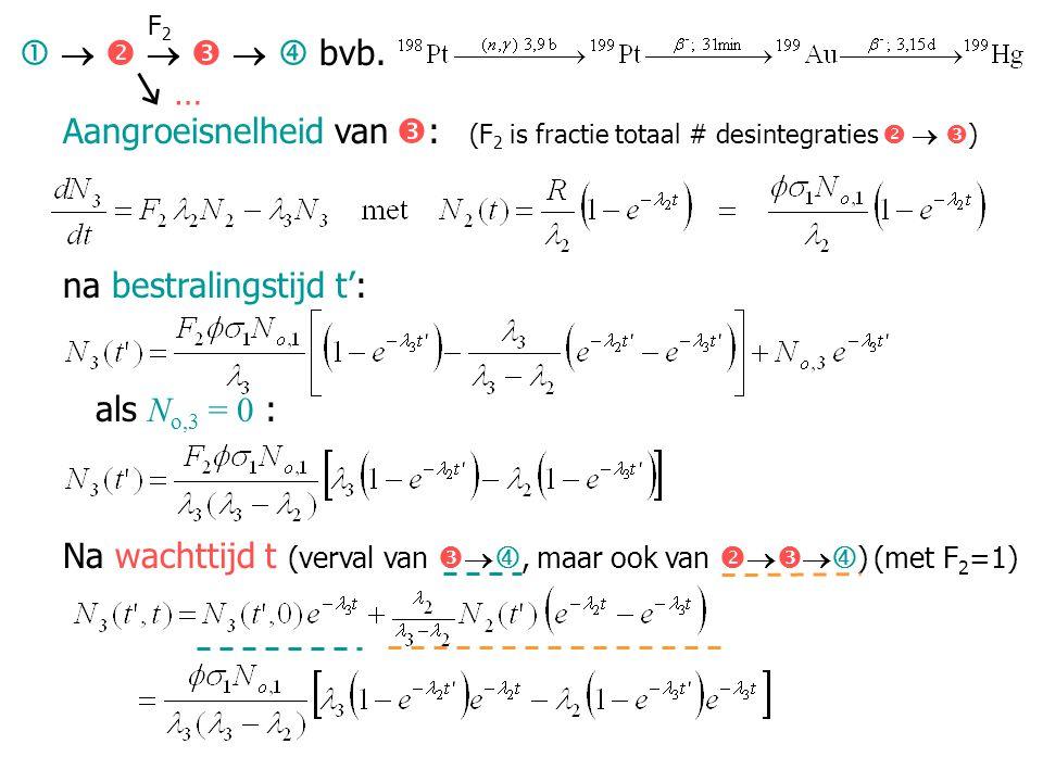 Aangroeisnelheid van  : (F 2 is fractie totaal # desintegraties    ) na bestralingstijd t': als N o,3 = 0 : Na wachttijd t (verval van   , maar