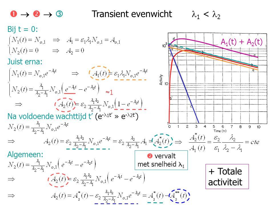 Bij t = 0: Juist erna: Na voldoende wachttijd t' (e - 1 t' » e - 2 t' ) Algemeen:      Transient evenwicht 1 < 2 A 1 (t) + A 2 (t) + Totale activ