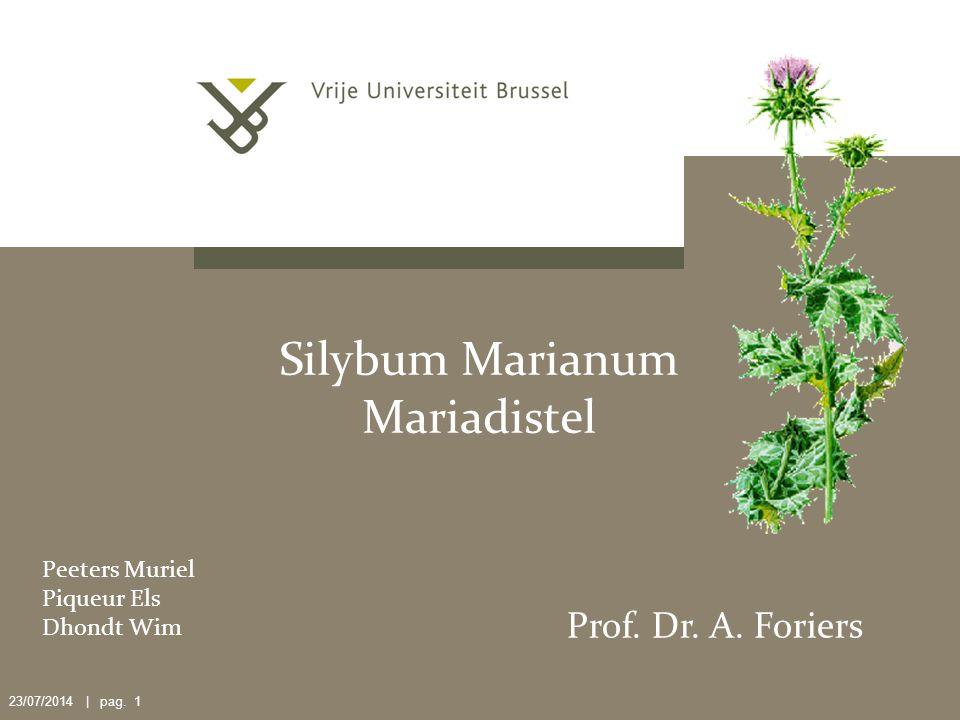 23/07/2014 | pag.1 Silybum Marianum Mariadistel Peeters Muriel Piqueur Els Dhondt Wim Prof.