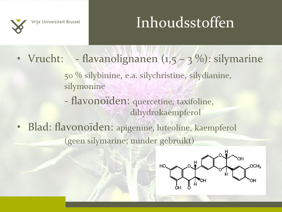 Inhoudsstoffen Vrucht: - flavanolignanen (1,5 – 3 %): silymarine 50 % silybinine, e.a.