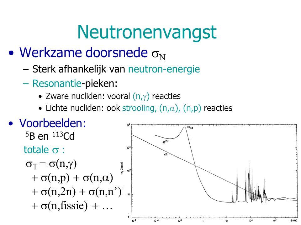 Neutronenvangst Werkzame doorsnede  N –Sterk afhankelijk van neutron-energie –Resonantie-pieken: Zware nucliden: vooral (n,  ) reacties Lichte nucli