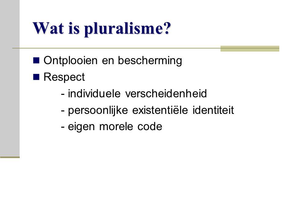 Wat is pluralisme.