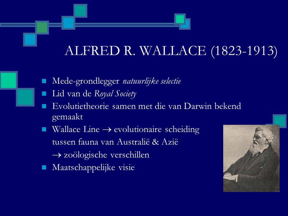 ALFRED R. WALLACE (1823-1913) Mede-grondlegger natuurlijke selectie Lid van de Royal Society Evolutietheorie samen met die van Darwin bekend gemaakt W