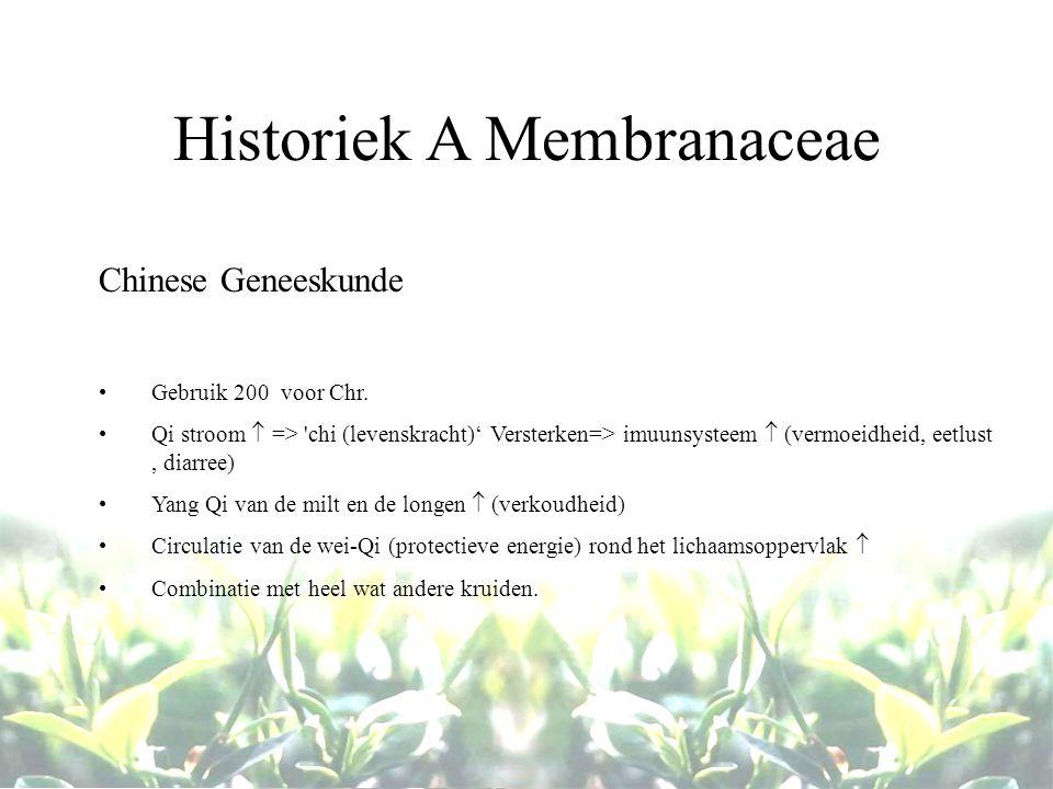 Historiek A Membranaceae Chinese Geneeskunde Gebruik 200 voor Chr. Qi stroom  => 'chi (levenskracht)' Versterken=> imuunsysteem  (vermoeidheid, eetl