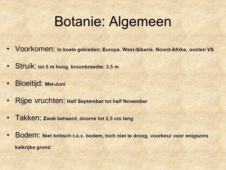 Commerciële producten Sedinal: –Bevat ballote (0,3ml/ml) + meidoorn (0,3ml/ml) + passiflora (0,3ml/ml) –30 of 100 ml fles Seneuval: –Bevat meidoorn (25 mg) + passiflora (25 mg) + valeriaan (100 mg) Natudor: –Bevat meidoorn (90 mg) + lindebloesem (70 mg) + valeriaan (130 mg)