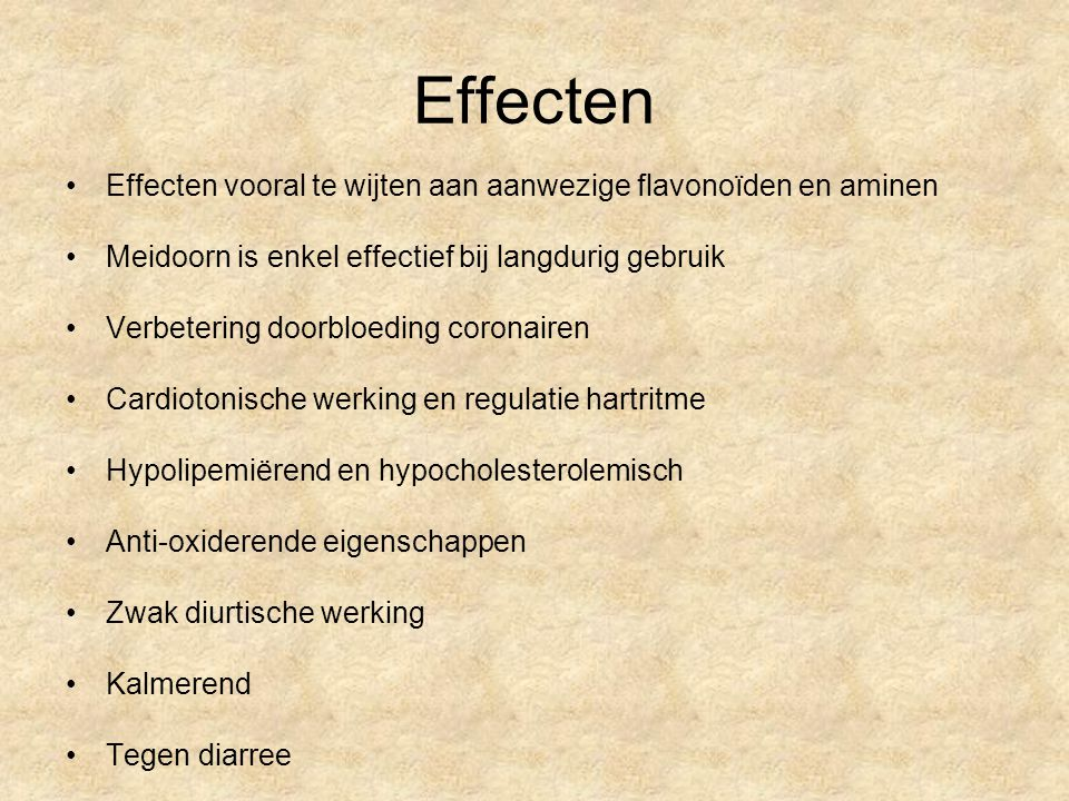 Effecten Effecten vooral te wijten aan aanwezige flavonoïden en aminen Meidoorn is enkel effectief bij langdurig gebruik Verbetering doorbloeding coro