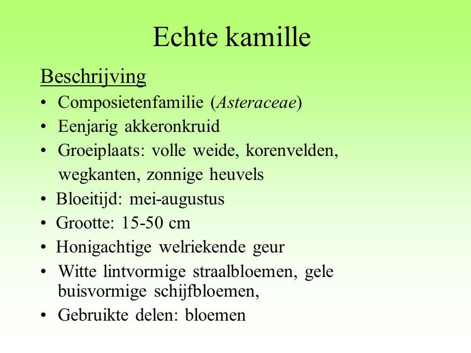 Inhoudsstoffen Etherische olie (0.3% -1.5%): -  -bisabolol, farnesol -  -bisabolol oxiden A, B, C -  -bisabolon oxide - sesquiterpenische lactonen (matricine) - chamazuleen - dihydrochamazuleen - farneseen