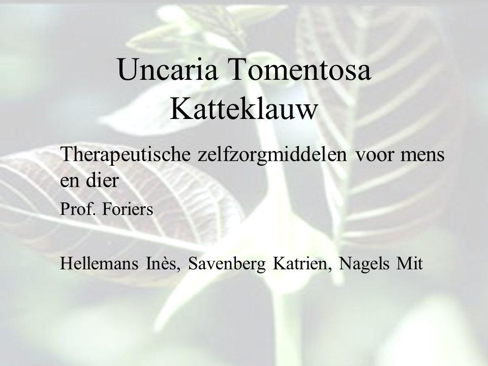 Uncaria Tomentosa Katteklauw Therapeutische zelfzorgmiddelen voor mens en dier Prof. Foriers Hellemans Inès,Savenberg Katrien, Nagels Mit