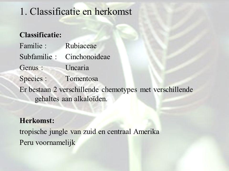 1. Classificatie en herkomst Classificatie: Familie : Rubiaceae Subfamilie : Cinchonoideae Genus : Uncaria Species : Tomentosa Er bestaan 2 verschille